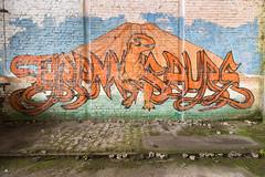 2016 (Sacha Lille) Tags: street art graffiti decay graf abandonned urbex graffitiartmuralstreetart
