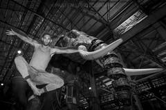 PASTEAU Photographe compte plus de 5 500 photos disponible sur cette galerie.