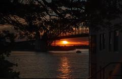 Sunset under Sydney bridge (JohnNguyen0297) Tags: sunset ferry harbor boat warm mood sony sydney silhouettes lensflare tones flares sydneybridge sydneyharborbridge a6000 ilce6000 selp18105 johnnguyen0297