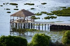 DSC01017 (hofsteej) Tags: lagune nature lagoon morocco maroc atlanticocean oualidia