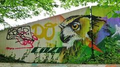 CAZN / Woluwe - 22 apr 2016 (Ferdinand 'Ferre' Feys) Tags: brussels streetart graffiti belgium belgique belgi bruxelles urbanart graff brussel graffitiart bxl artdelarue urbanarte cazn