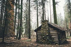 Squatter's Cabin - Sequoia National Park (jasde) Tags: fog cabin sequoia huckleberrymeadow squatterscabin