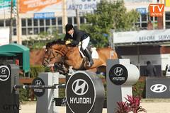 CSN e CSI (gptvhipismo) Tags: internacional cavalos campeonato esporte olimpiadas hipismo tvaovivo