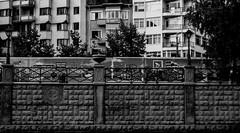 Duvarlar (svabodda) Tags: turkey trkiye eskiehir turchia turkei porsuk ar esnaf porsukay