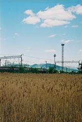 offside2016. mukachevo. (Yaroslav F.) Tags: camera sky mountain film nature analog train 35mm swamp marsh regional mire rvr electrictrain yaroslav mukachevo futymskyi trascarpathia