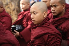 Intense (Road Blog) Tags: burma buddhism myanmar mandalay buddhistmonk