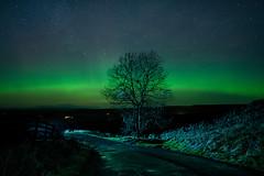 New Year Aurora (.Brian Kerr Photography.) Tags: landscape newyear northumberland aurora hadrianswall happynewyear landscapephotography briankerrphotography briankerrphoto sonyuk aurorauk a7rii