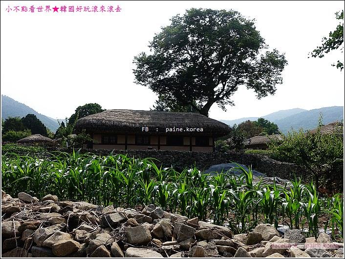 牙山外巖民俗村 (22).JPG