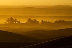 Marocco-Deserto Erg Chebbi - Tramonto (rosella sale) Tags: africa travel landscape tramonto dune natura marocco viaggi palme viaggio luce paesaggio deserto orizzonte oasi linee ergchebbi africasettentrionale rosellasale desertoergchebbi fotorosellasale