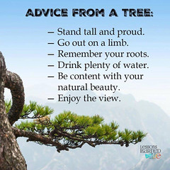 Best advice to live by.like and comment if you agree. ... (garry21) Tags: you live best if advice comment agree bylike