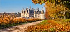 L'automne  Chambord (kalzennyg) Tags: france castle automne colours couleurs chambord loire chteau blois kalzenny