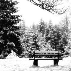 Hohe Kanzel (a.penny) Tags: schnee snow monochrome bench square blackwhite nikon wiesbaden hessen forrest bank wald weiss taunus schwarz rheingau 1x1 hohe quadrat kreis kanzel 500x500 apenny niedernhausen aw120