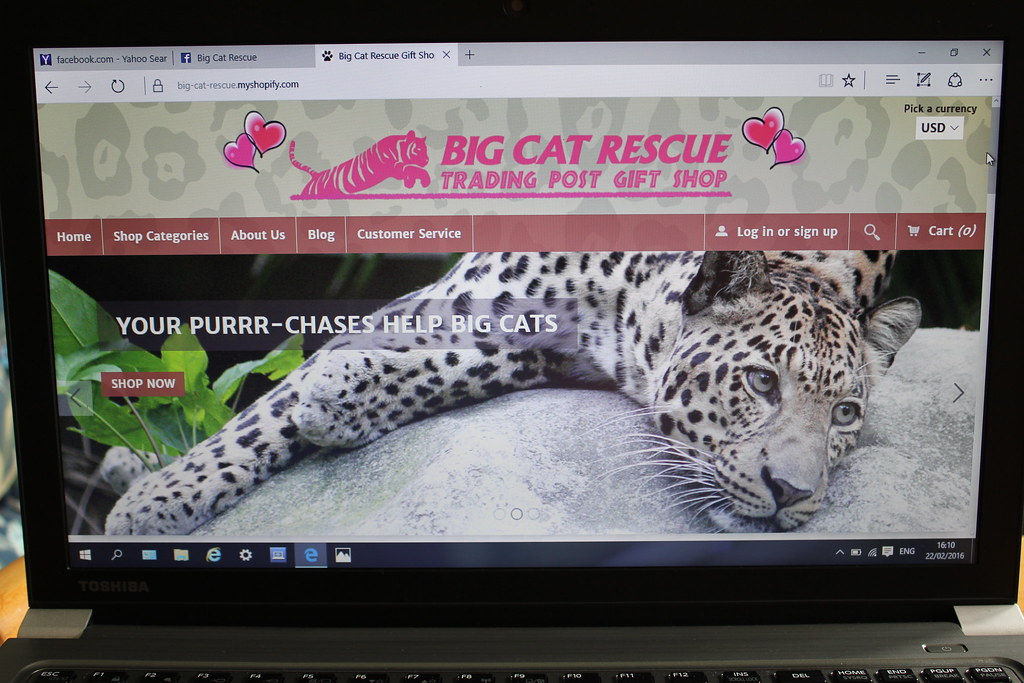 Vote Big Cat Rescue