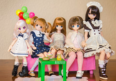 Pure neemo family Feb 2016 (Alix Real) Tags: family pink black cute ikea ex sarah la photo outfit doll dolls little d no pic s x m vel teacher international fairy lil match 16 minami xs rement pure mode maid diorama sensei kuni sahra picco neemo chisa otogi yuzuha azone pureneemo chiika excute lilfairy azonedoll azoneint