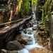 The Flume Gorge, Lincoln, New Hampshire