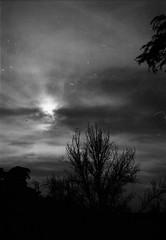 Mini serie / Melancola y Siluetas (Sentamashi) Tags: film nature analog 35mm dark landscape 50mm poetry darkness kodak portra nikonf3 sombras siluetas contrastes analgico pelcula potico gtico