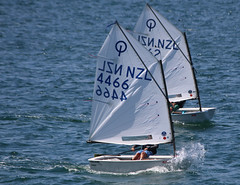 IMG_0988.jpg (Samej) Tags: newzealand sailing nz wellington regatta optimist wellingtonharbour worserbay 4466 wbbc