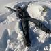 Cleiton se jogou na neve fofa