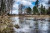 El río (miguelangelortega) Tags: trees planta río landscape agua árboles fuji paisaje árbol l fujifilm invierno cuenca corriente ribera serenidad júcar corrientedeagua ltytr1 ríojúcar arroyio x100s lechoderío