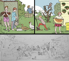 Savour Soil Permaculture - details (tanaudel) Tags: art chickens chicken birds illustration children duck farm farming strawberries header poultry magpie kookaburra permaculture sulphurcrestedcockatoo