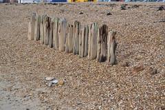Southsea (curly_em) Tags: wood winter sea beach coast seaside hampshire southsea groins