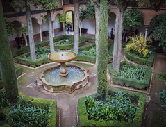 The Coolness of Green (Colormaniac too) Tags: plants green water fountain pool garden spain colorful peace tranquility courtyard andalucia foliage textures alhambra granada shrubs flypaper