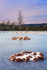 Icebound Birch (lubosbruha) Tags: winter sunset lake mountains tree ice water forest landscape frozen moss outdoor frosty czechrepublic birch isle pound islet moorland umava cze eskrepublika icebound bohemianforest morrland borovlada chalupecksla peetbog