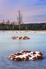 Icebound Birch (lubosbruha) Tags: winter sunset lake mountains tree ice water forest landscape frozen moss outdoor frosty czechrepublic birch isle pound islet moorland šumava cze českárepublika icebound bohemianforest morrland boroválada chalupeckáslať peetbog