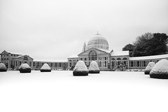 White Wedding - Syon The Great Conservatory by Simon & His Camera (Simon & His Camera) Tags: winter blackandwhite bw white snow building london glass monochrome weather gardens architecture outdoor conservatory dome yew iconic middlesex brentford isleworth syon syonpark syonhouse syonhousepark greatconservatory simonandhiscamera