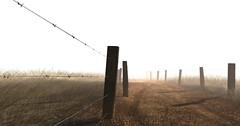 Miles to Go (It Feels Like Rain) Tags: fence fences sl secondlife fenceline hff nusquam fencefriday happyfencefriday fencedfriday shannoncardalines