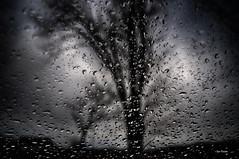 Here in my car. :) (Igor Danilov) Tags: usa storm nature water car rain america radio march iso200 droplets drops spring nikon doors wind pennsylvania song parking 28mm 1800 inside safe 1979 locked numan d90 f33 igordanilov