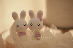 rabbit and bunny Wedding Cake Topper (charles fukuyama) Tags: wedding forest groom bride conejo custom lapin sculpted coniglio cakedecoration  weddingcaketopper  cuterabbit claydoll handmadecaketopper animalscaketopper kikuike