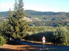 The Driveway (RobW_) Tags: africa morning wednesday march walk south driveway hydro western cape stellenbosch 2016 02mar2016
