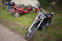 _R001321.jpg (Alain Stoll) Tags: bike indian motorbike harleydavidson bikers hellsangels tancrou