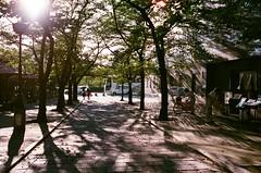 Kyoto Japan / AGFA VISTAPlus / Nikon FM2 (Toomore) Tags: japan 35mm nikon kyoto iso400 nikkor agfa fm2 vistaplus