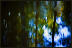 Mystic Reflection (Sergei P. Zubkov) Tags: august 2015 terijoki