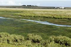 DSC01044 (hofsteej) Tags: lagune nature lagoon morocco maroc atlanticocean oualidia