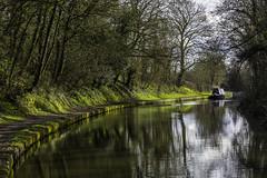 20160328_That idyllic feeling (Damien Walmsley) Tags: trees water reflections canal longboat idyllic grandunioncanal knowle