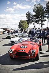 AC Cobra 289 1963 (Anchoafoto) Tags: accobra anchoafoto jaramaclassic