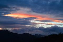 Salt of the sky (RKAMARI) Tags: autumn trees colour fall nature fog forest nationalpark cities bolu yedigller