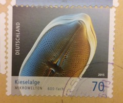 (sftrajan) Tags: germany deutschland algae biology timbre microbiology postagestamp philately sello filatelia briefmarke philatelie  diatomeen kieselalgen   kieselalge microwelten