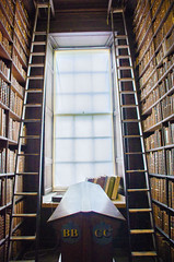 An Alcove at the Long Library (seamusruizearle) Tags: county ireland dublin irish college trinitycollege trinity select kildare countykildare