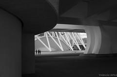 City of Arts and Sciences. Santiago Calatrava's (Norman Collins2012) Tags: santiago white eye valencia sunshine contrast high amazing spain space age curve futuristic d7000