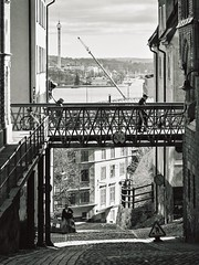 Levels (Per sterlund) Tags: street city bridge people blackandwhite bw monochrome mono noiretblanc sweden stockholm sdermalm schweden streetphotography panasonic streetphoto sverige bnw baw 2016 svartvitt bastugatan gatufoto streetveiw skolgrnd panasonicgx7