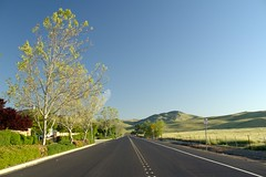 Laughlin Road Livermore (jeffmgrandy) Tags: landscape hiking hills livermore brushy