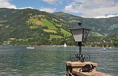 2014 Oostenrijk 0959 Zell am See (porochelt) Tags: austria oostenrijk sterreich zellamsee autriche zellersee