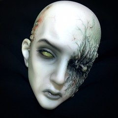 Hans von Rungholt (Sadomina) Tags: doll zombie ghost bjd kane abjd balljointed rungholt faceup ringdoll sadomina
