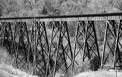 Rusty Tressle (MTSOfan) Tags: railroad bridge bw greyscale tressle