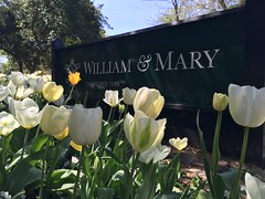 New sign = new tulips (William & Mary Photos) Tags: flowers sign corner spring scenery tulips wm williamandmary confusion williammary collegeofwilliamandmary collegeofwilliammary
