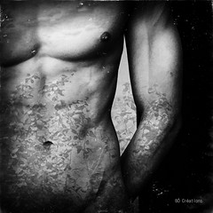 Floraison (B Crations) Tags: monochrome artwork noirblanc masculin artdigital bodystudy photographisme malebodystudy